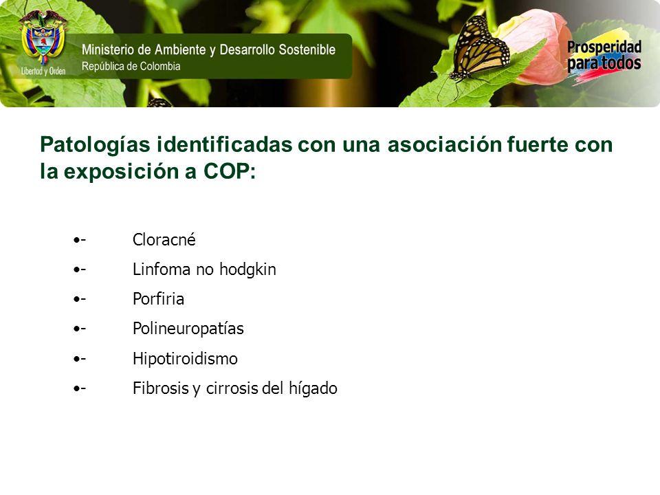 Patologías identificadas con una asociación fuerte con la exposición a COP: