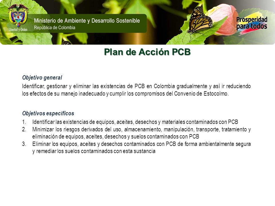 Plan de Acción PCB Objetivo general