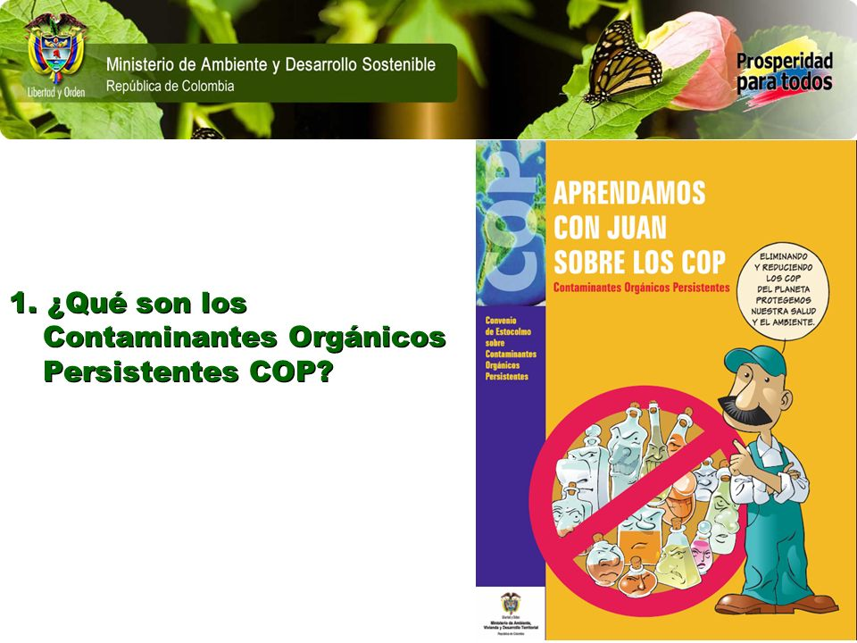 1. ¿Qué son los Contaminantes Orgánicos Persistentes COP