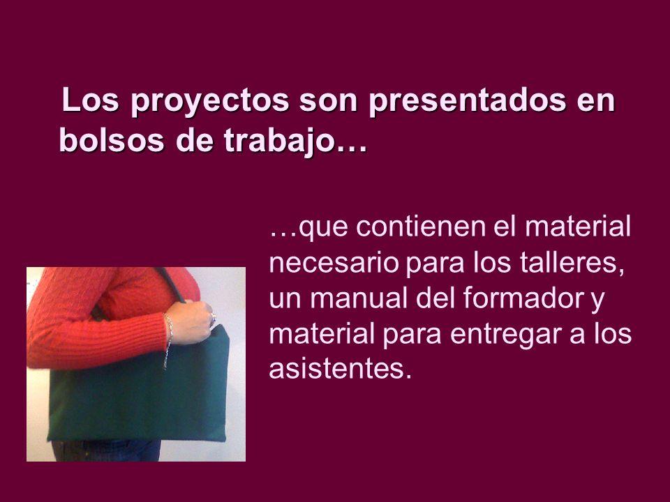 Los proyectos son presentados en bolsos de trabajo…