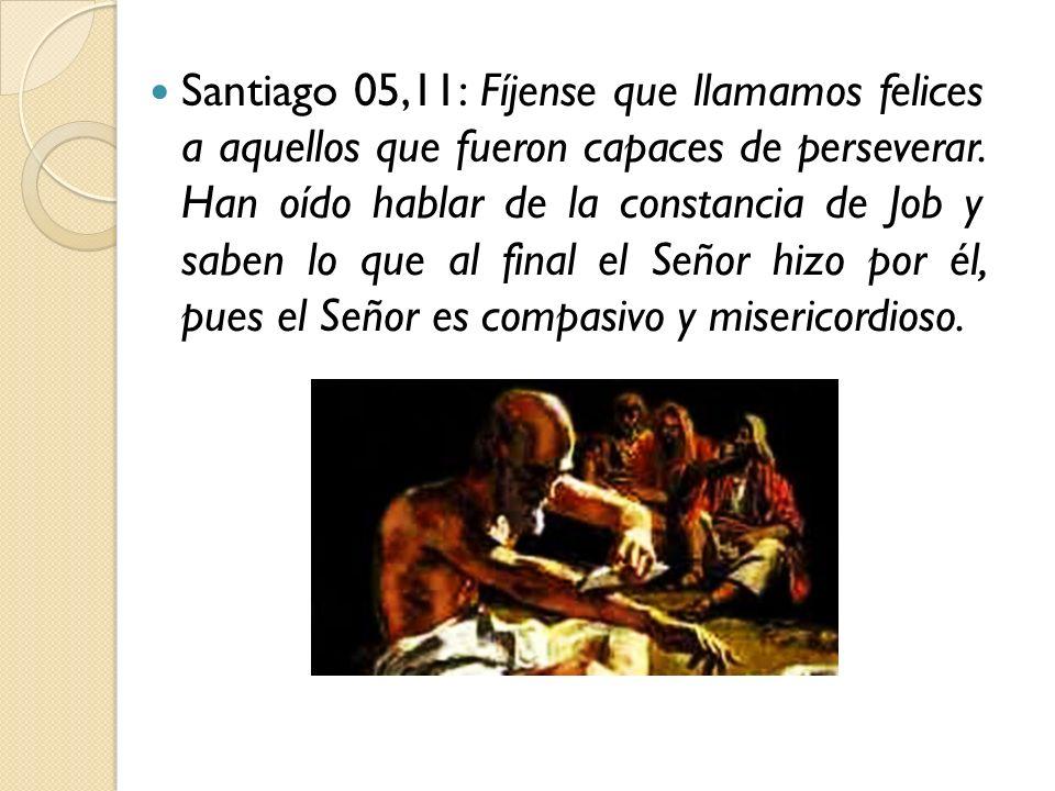 Santiago 05,11: Fíjense que llamamos felices a aquellos que fueron capaces de perseverar.
