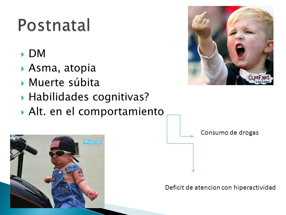 Postnatal DM Asma, atopia Muerte súbita Habilidades cognitivas