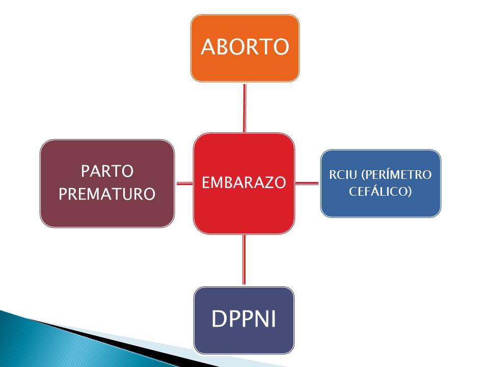 RCIU (PERÍMETRO CEFÁLICO)