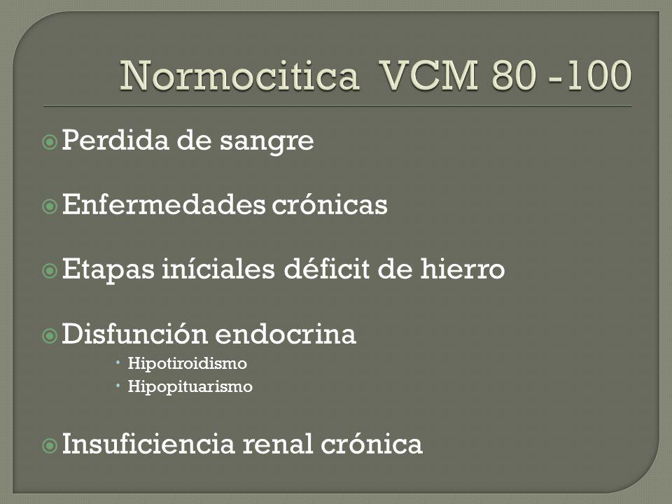 Normocitica VCM 80 -100 Perdida de sangre Enfermedades crónicas