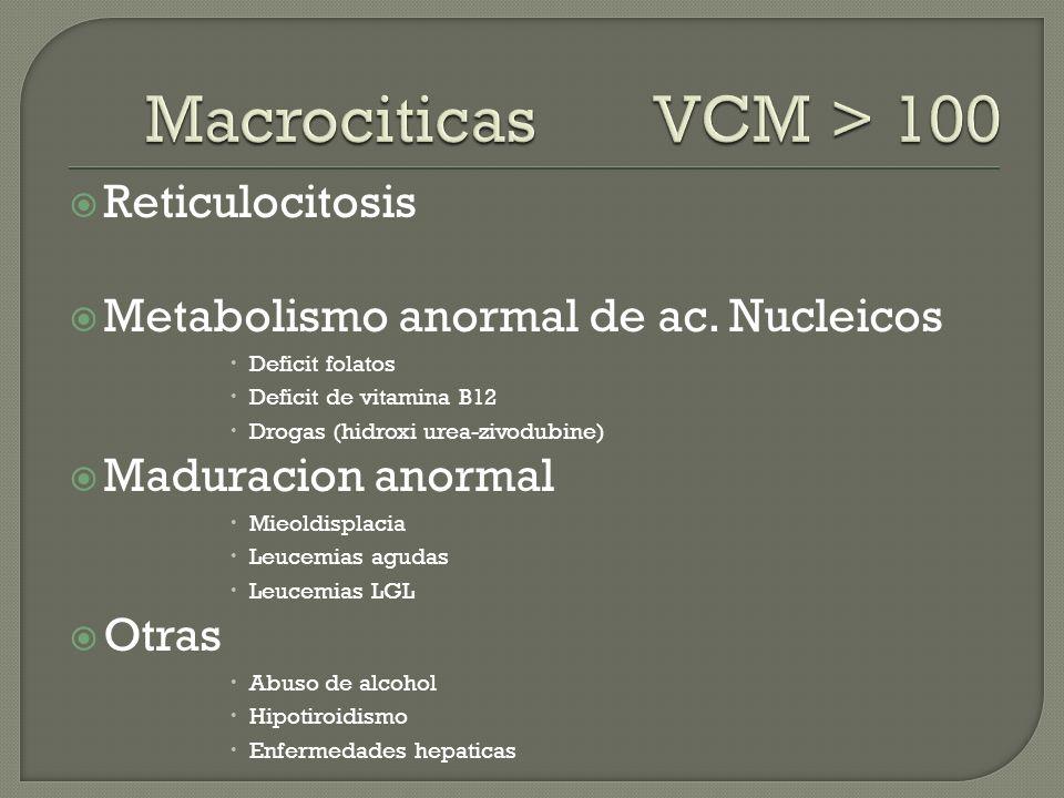 Macrociticas VCM > 100 Reticulocitosis