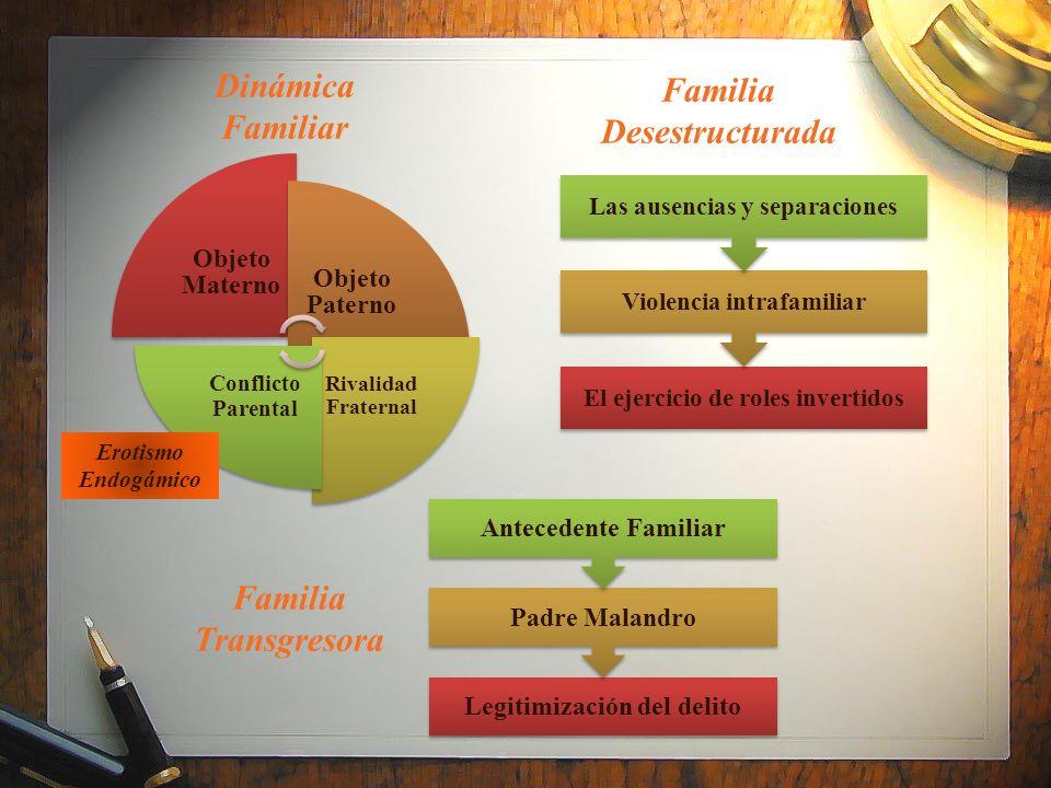 Dinámica Familiar Familia Desestructurada Familia Transgresora