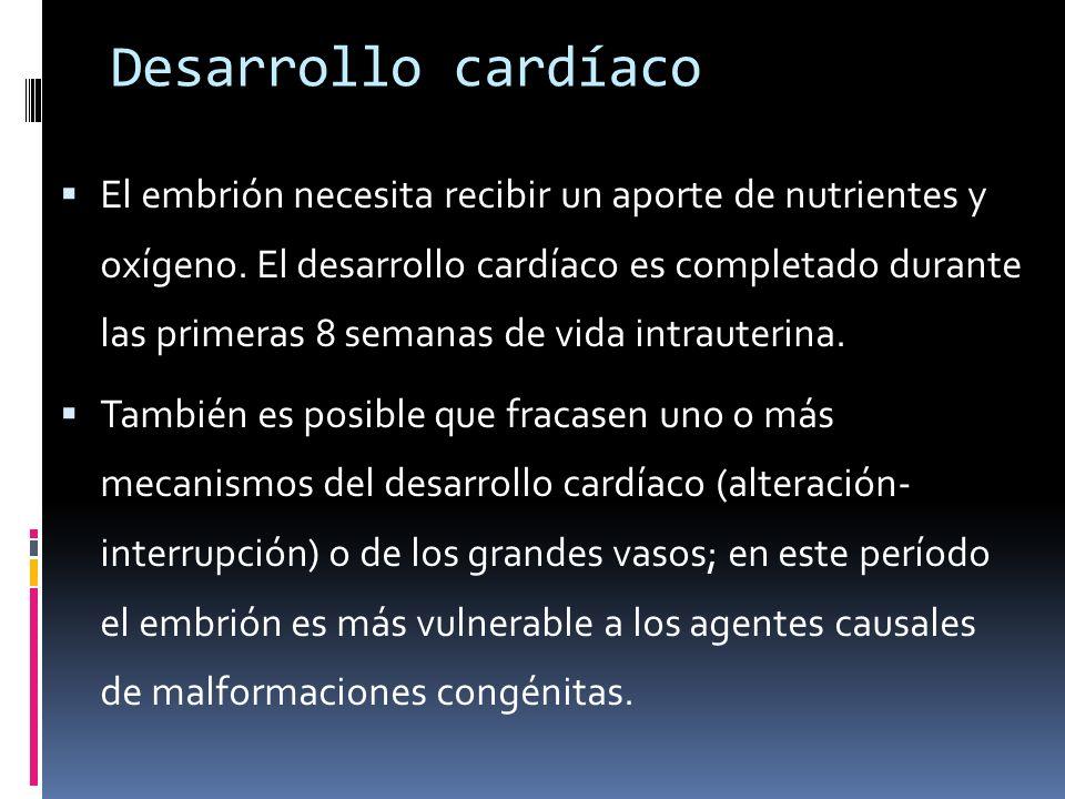 Desarrollo cardíaco