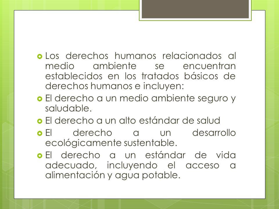 Los derechos humanos relacionados al medio ambiente se encuentran establecidos en los tratados básicos de derechos humanos e incluyen: