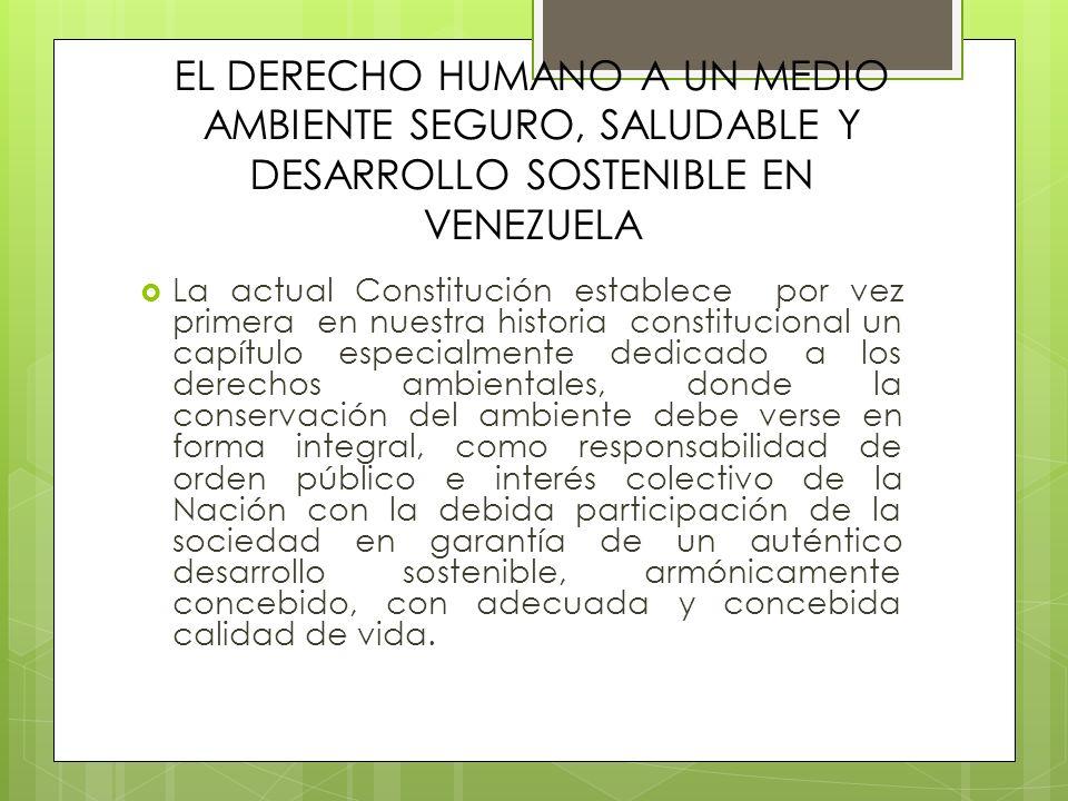 EL DERECHO HUMANO A UN MEDIO AMBIENTE SEGURO, SALUDABLE Y DESARROLLO SOSTENIBLE EN VENEZUELA