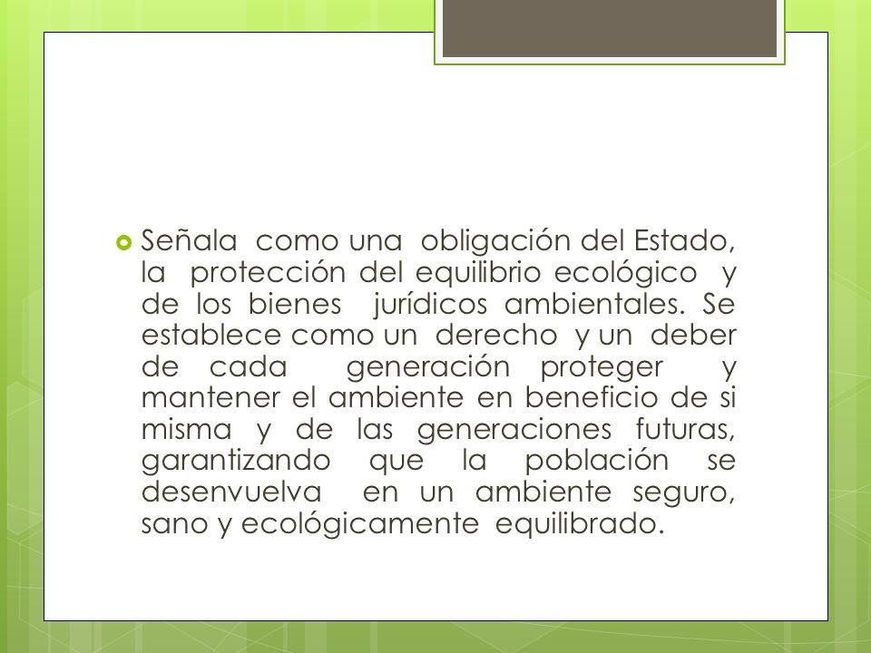 Señala como una obligación del Estado, la protección del equilibrio ecológico y de los bienes jurídicos ambientales.