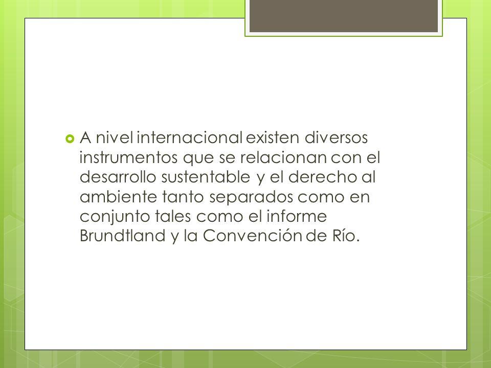A nivel internacional existen diversos instrumentos que se relacionan con el desarrollo sustentable y el derecho al ambiente tanto separados como en conjunto tales como el informe Brundtland y la Convención de Río.