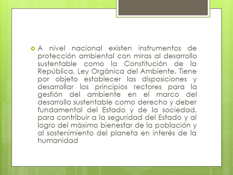 A nivel nacional existen instrumentos de protección ambiental con miras al desarrollo sustentable como la Constitución de la República, Ley Orgánica del Ambiente.
