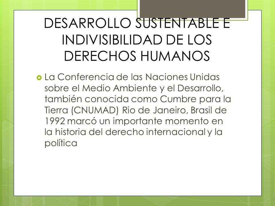 DESARROLLO SUSTENTABLE E INDIVISIBILIDAD DE LOS DERECHOS HUMANOS