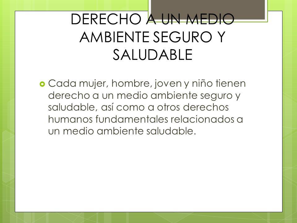 DERECHO A UN MEDIO AMBIENTE SEGURO Y SALUDABLE