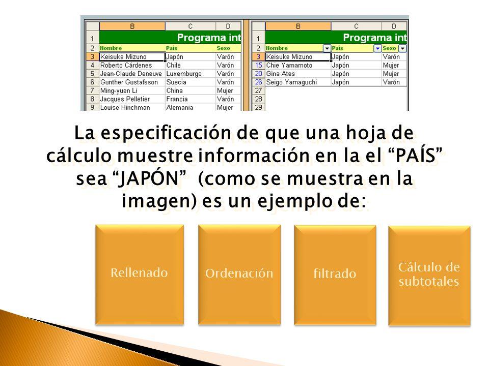 La especificación de que una hoja de cálculo muestre información en la el PAÍS sea JAPÓN (como se muestra en la imagen) es un ejemplo de: