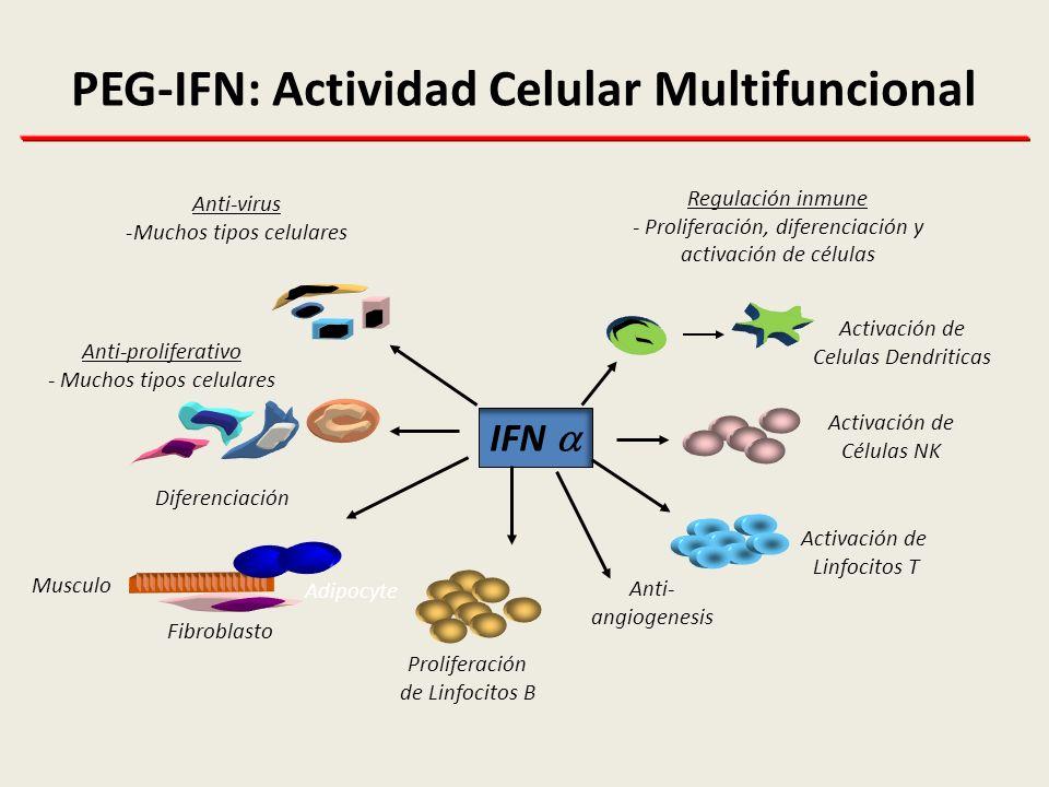 PEG-IFN: Actividad Celular Multifuncional