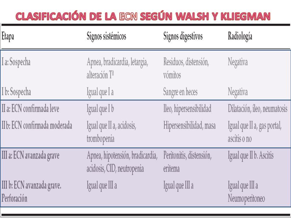 CLASIFICACIÓN DE LA ECN SEGÚN WALSH Y KLIEGMAN