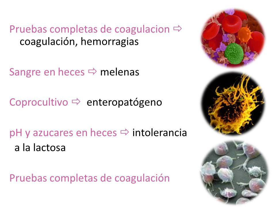 Pruebas completas de coagulacion  coagulación, hemorragias Sangre en heces  melenas Coprocultivo  enteropatógeno pH y azucares en heces  intolerancia a la lactosa Pruebas completas de coagulación