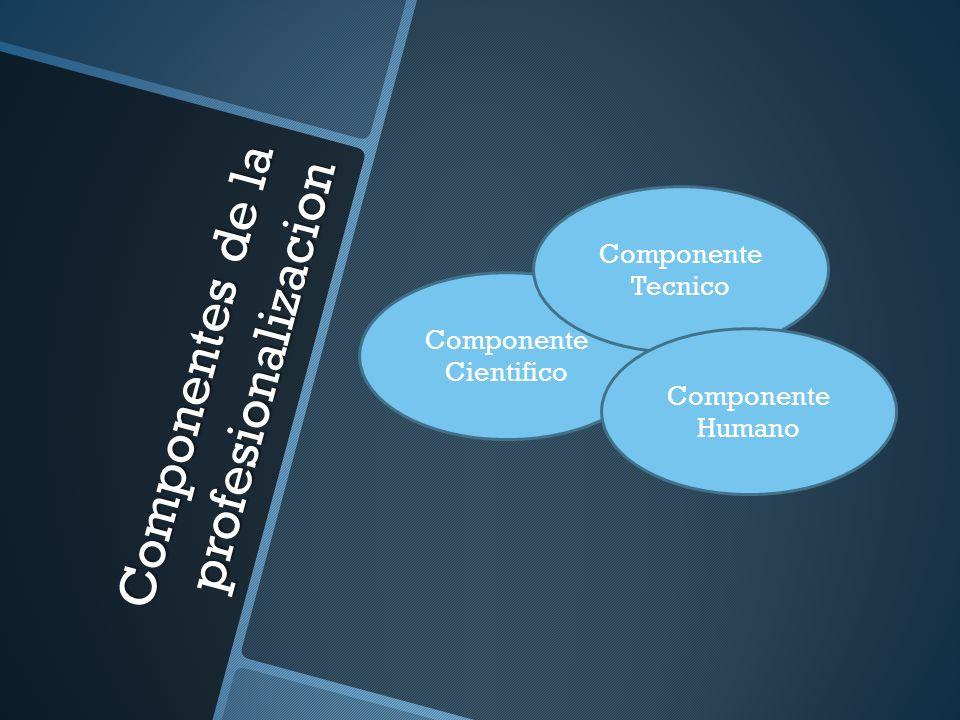 Componentes de la profesionalizacion