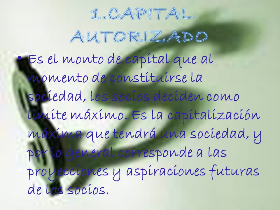 1.CAPITAL AUTORIZADO