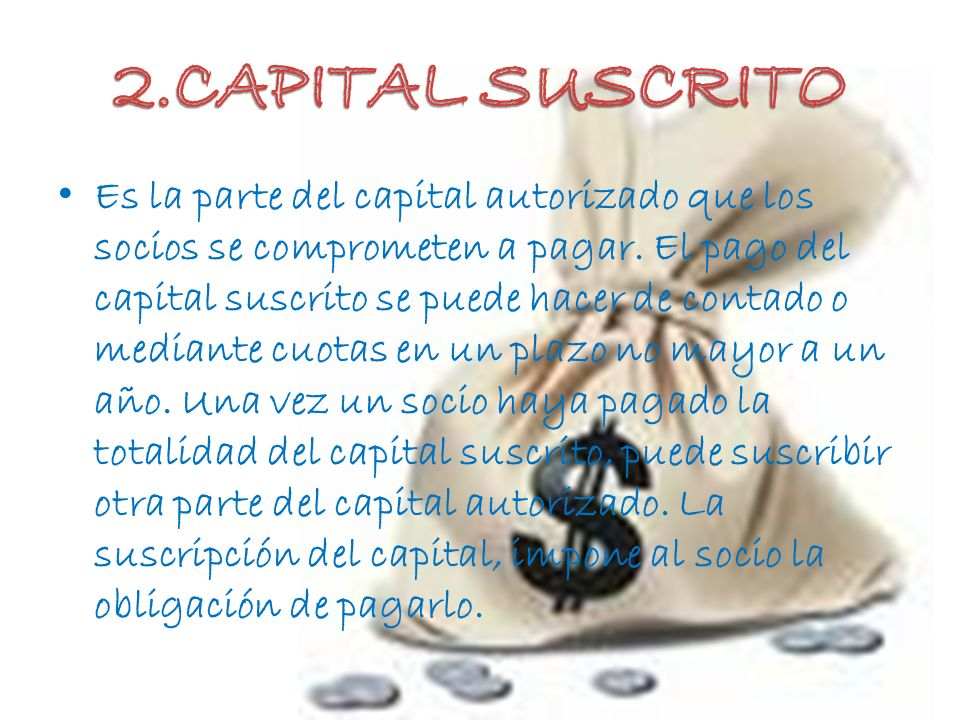 2.CAPITAL SUSCRITO