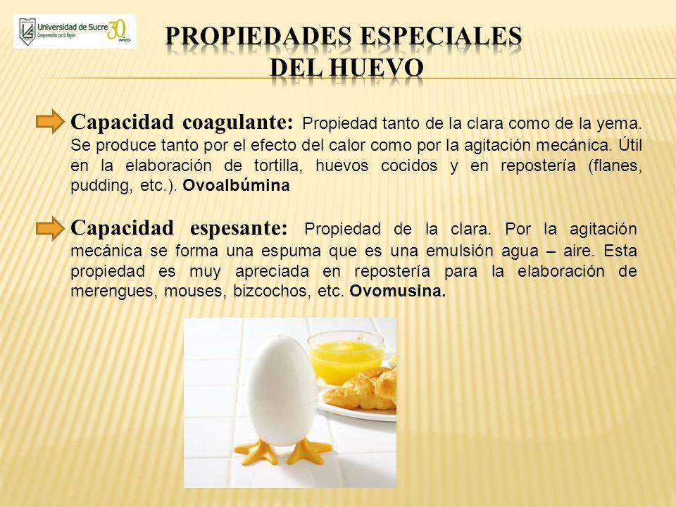 propiedades especiales del huevo
