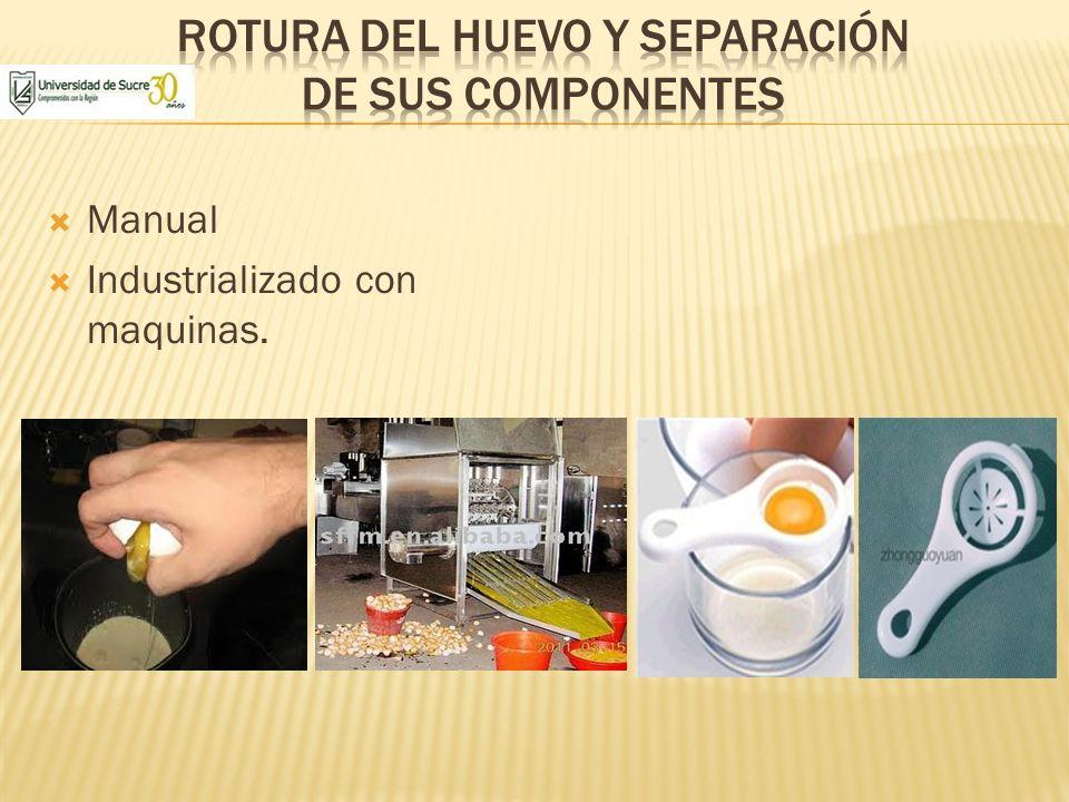 Rotura del huevo y separación de sus componentes