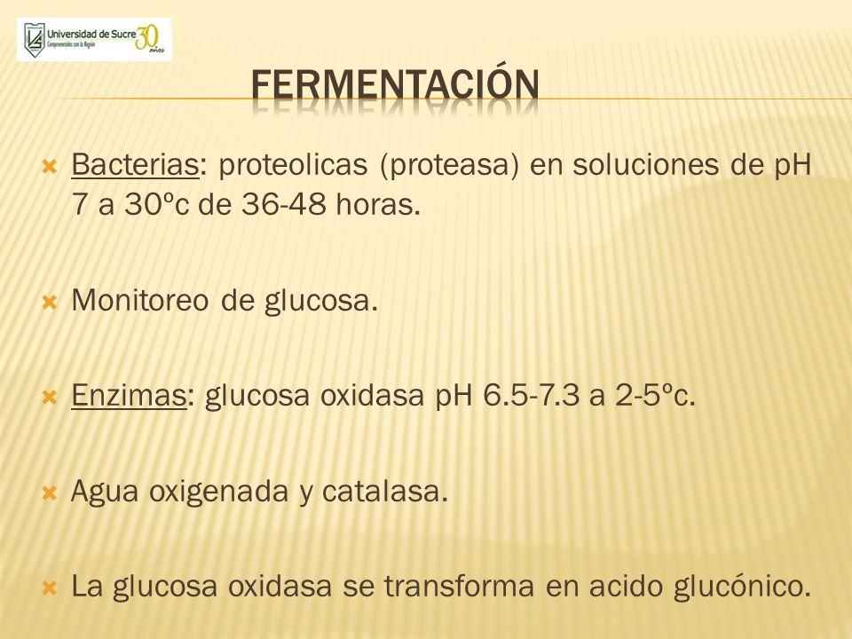 fermentación Bacterias: proteolicas (proteasa) en soluciones de pH 7 a 30ºc de 36-48 horas. Monitoreo de glucosa.
