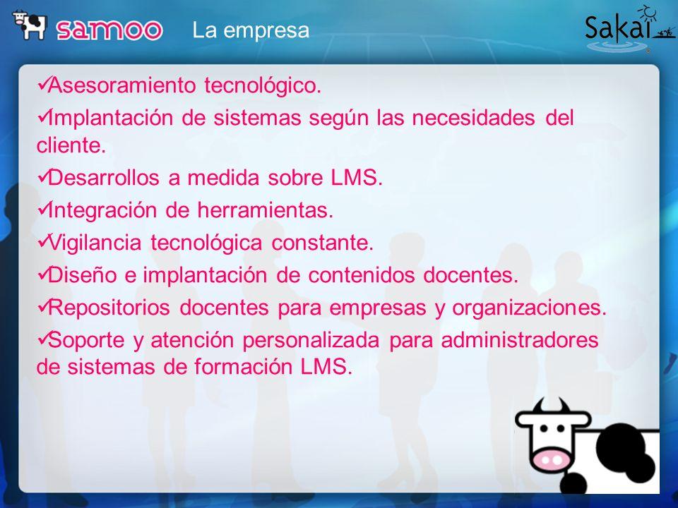 La empresa Asesoramiento tecnológico. Implantación de sistemas según las necesidades del cliente. Desarrollos a medida sobre LMS.