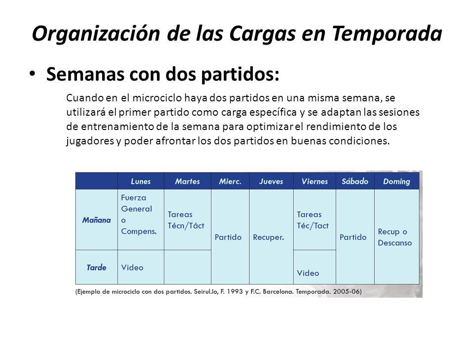 Organización de las Cargas en Temporada