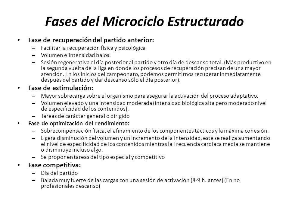 Fases del Microciclo Estructurado