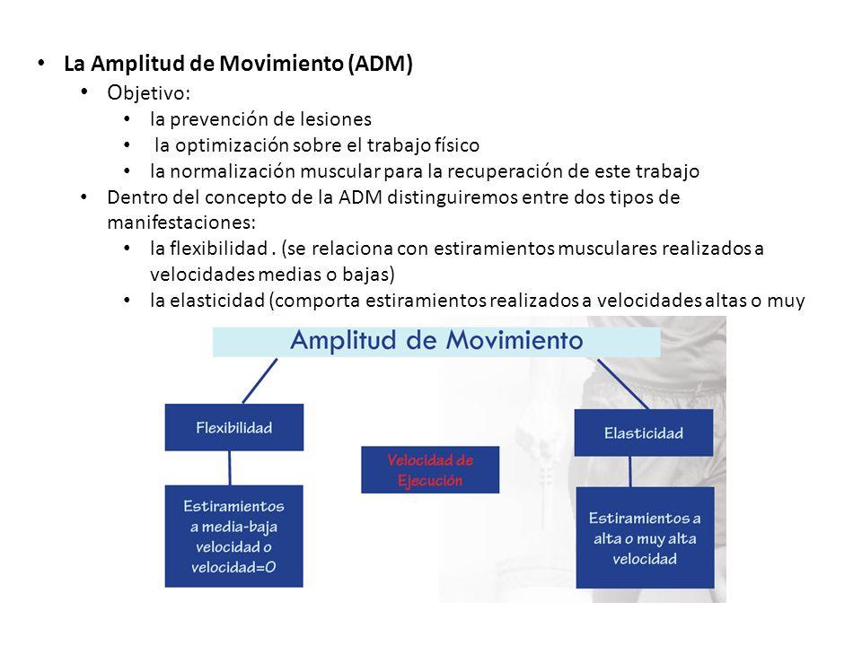 La Amplitud de Movimiento (ADM) Objetivo: