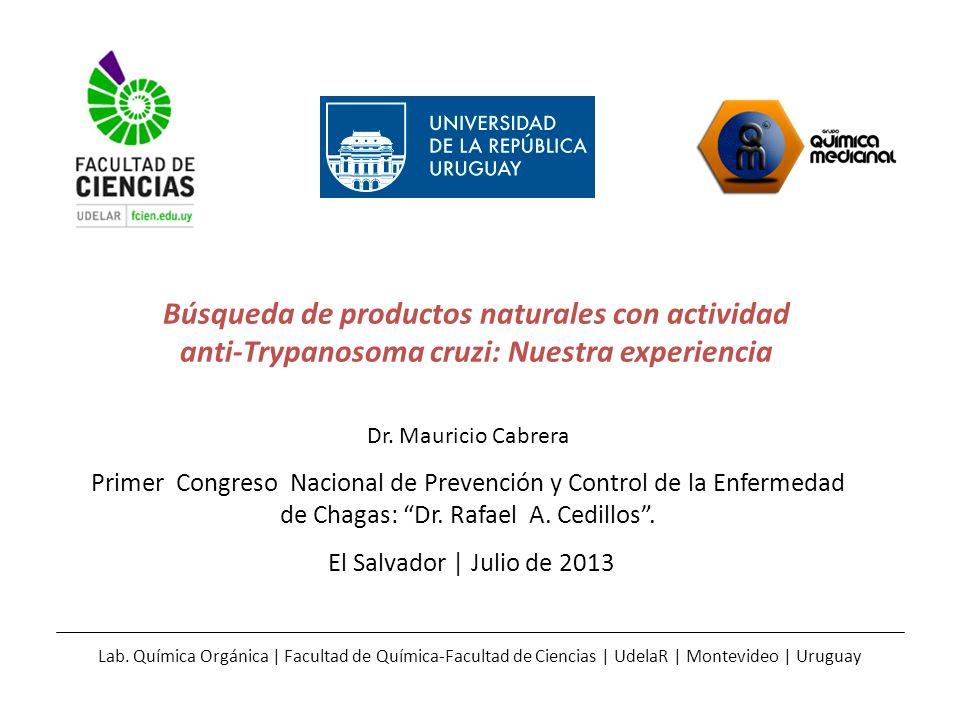 Búsqueda de productos naturales con actividad anti-Trypanosoma cruzi: Nuestra experiencia