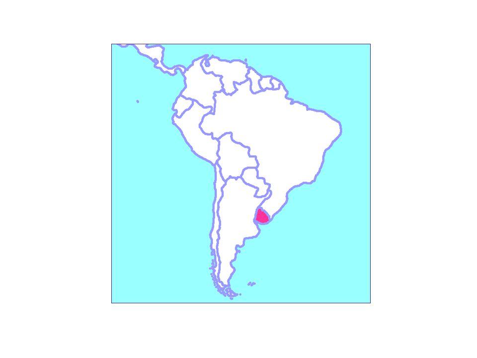 Ante el éxito con este estudio, decidimos, hace dos años iniciar un trabajo de búsqueda de principios anti-T. cruzi en plantas uruguayas.