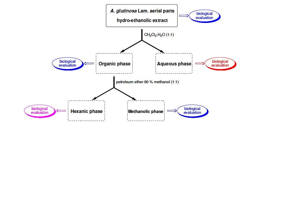 Luego la capa de diclorometano, se vuelve a fraccionar en una fase apolar (hexano) y una fase polar (metanol:agua).