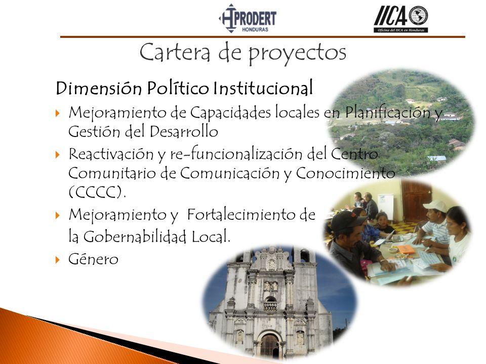 Cartera de proyectos Dimensión Político Institucional