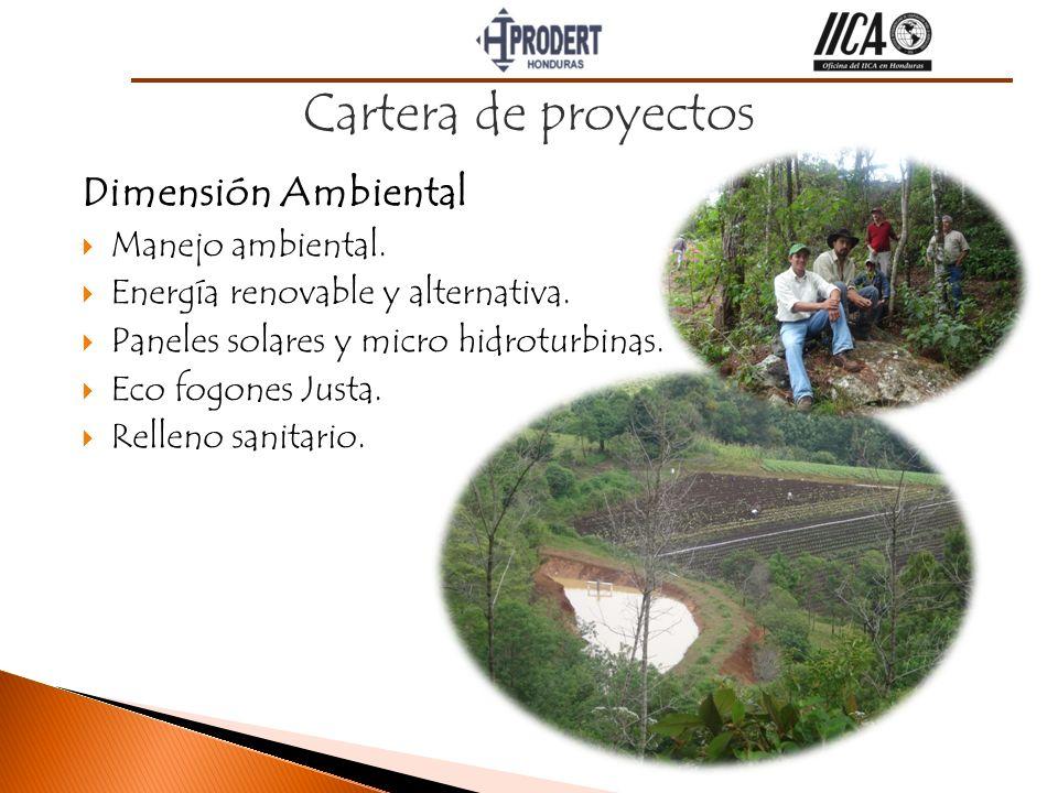 Cartera de proyectos Dimensión Ambiental Manejo ambiental.