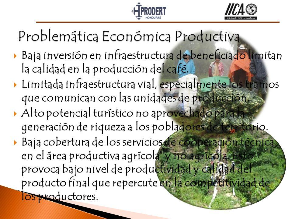 Problemática Económica Productiva