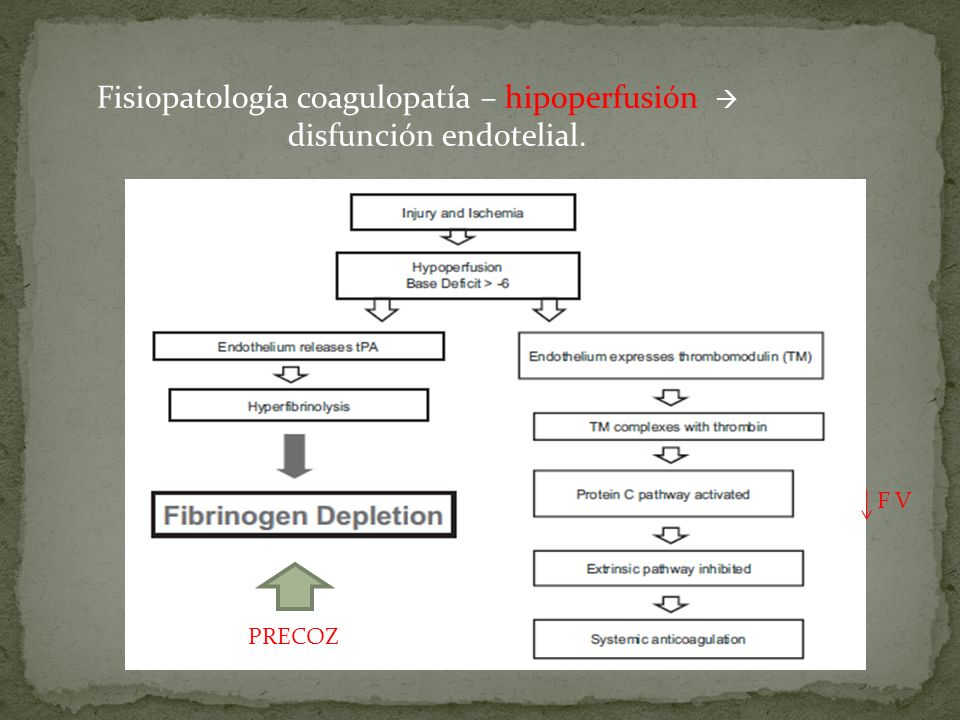 Fisiopatología coagulopatía – hipoperfusión  disfunción endotelial.