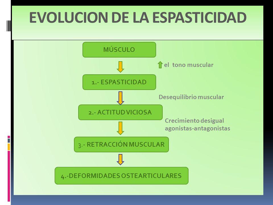 EVOLUCION DE LA ESPASTICIDAD