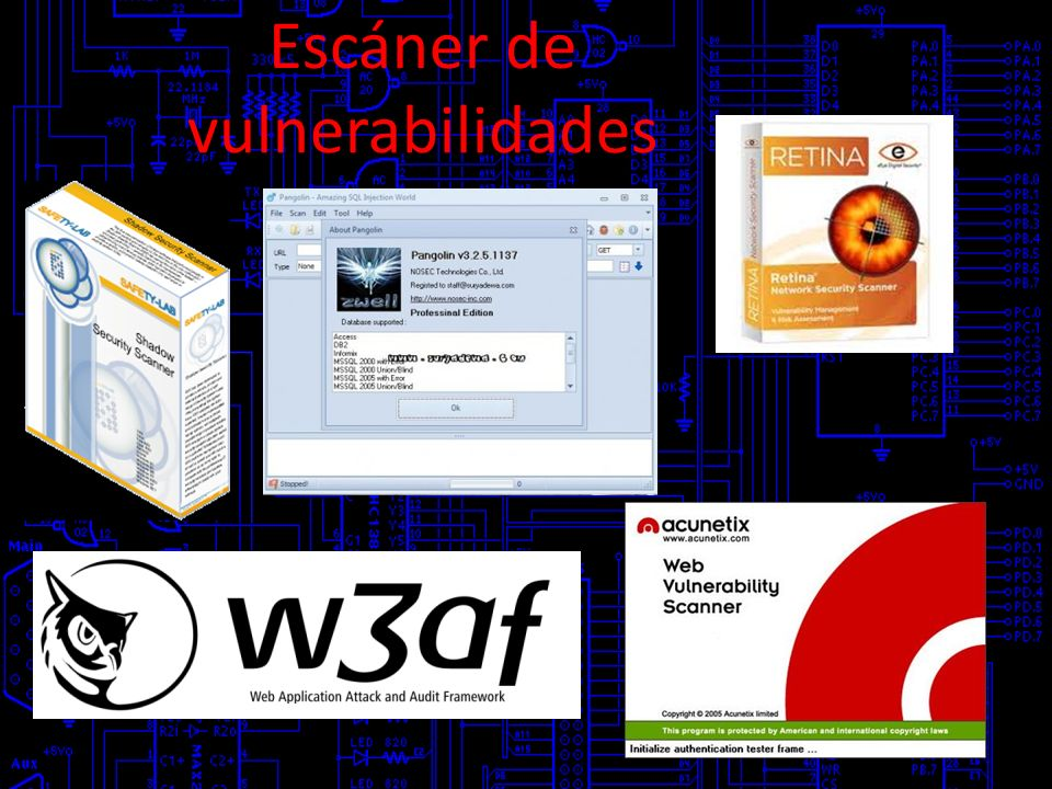 Escáner de vulnerabilidades