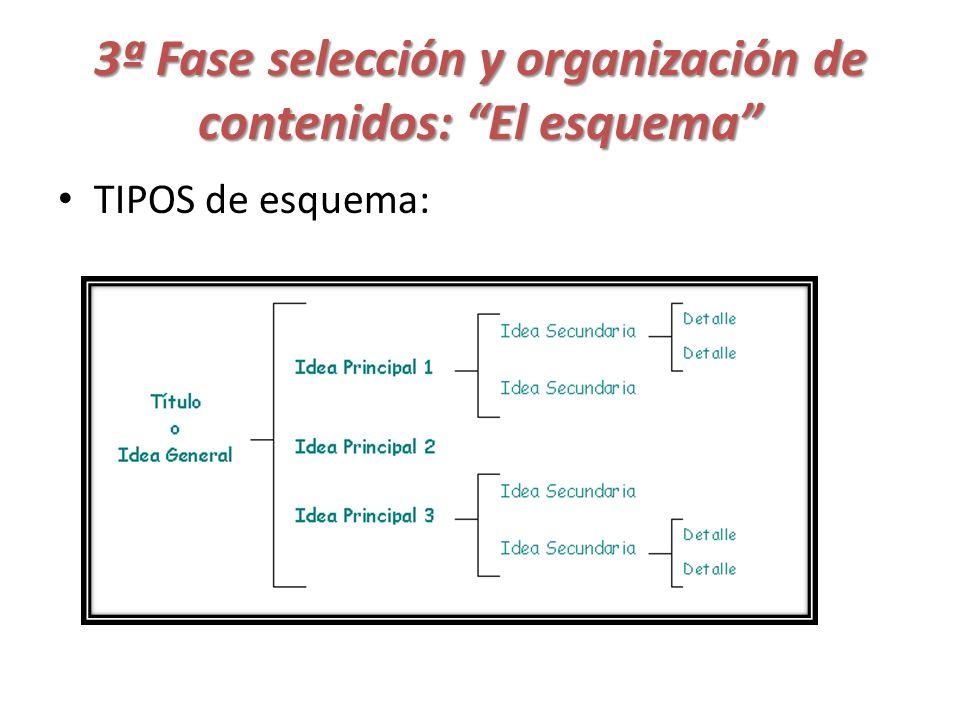 3ª Fase selección y organización de contenidos: El esquema