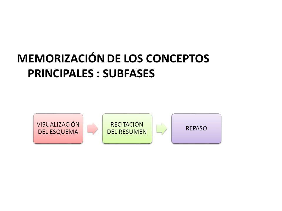 MEMORIZACIÓN DE LOS CONCEPTOS PRINCIPALES : SUBFASES