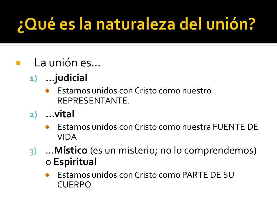 ¿Qué es la naturaleza del unión