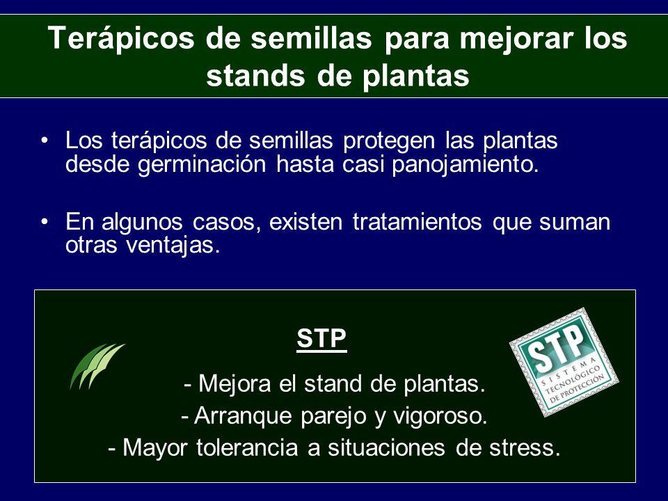 Terápicos de semillas para mejorar los stands de plantas