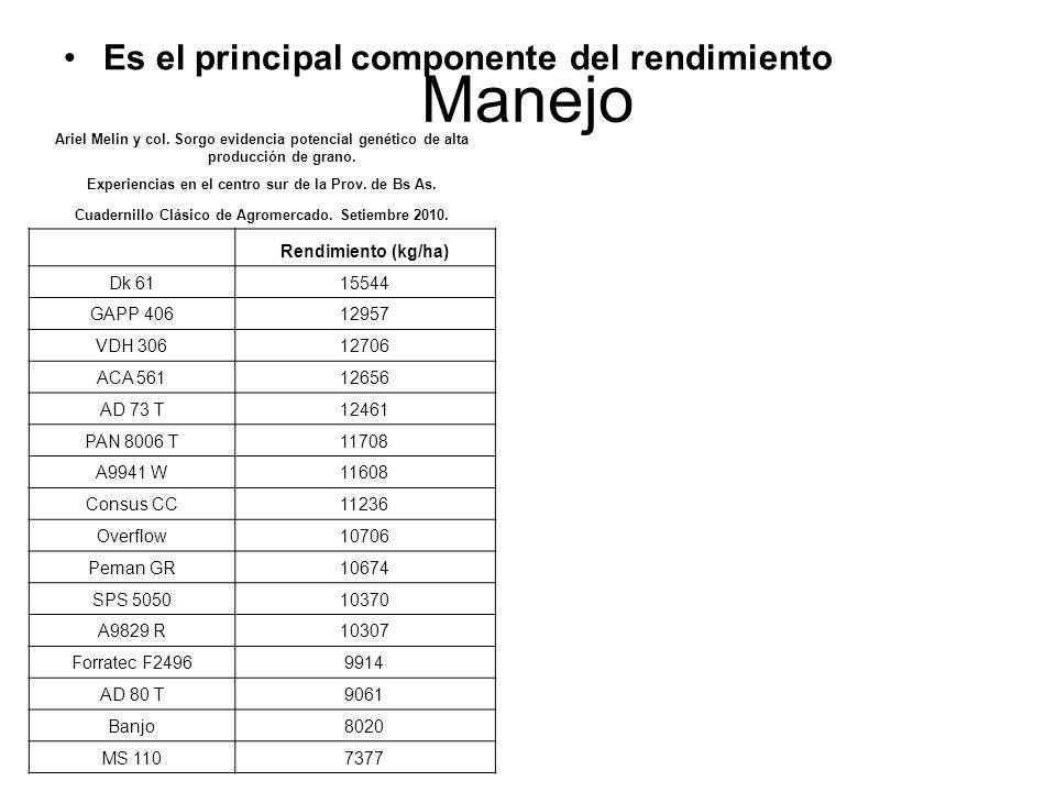 Manejo Es el principal componente del rendimiento Rendimiento (kg/ha)