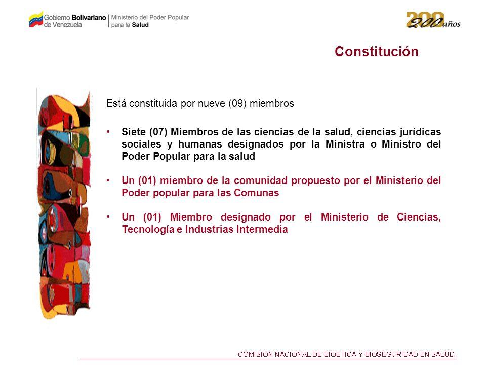 Constitución Está constituida por nueve (09) miembros