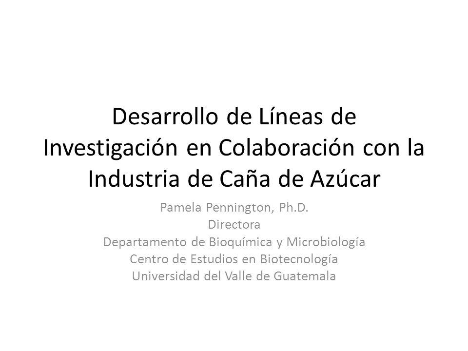 Desarrollo de Líneas de Investigación en Colaboración con la Industria de Caña de Azúcar