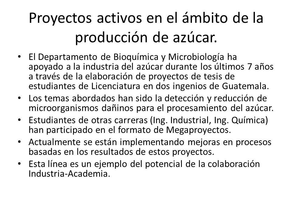 Proyectos activos en el ámbito de la producción de azúcar.