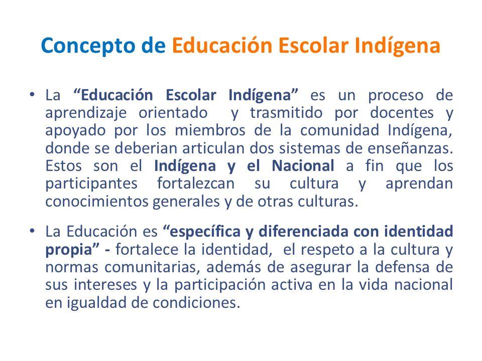 Concepto de Educación Escolar Indígena